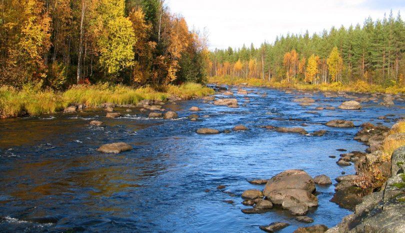 Suomen kansallispuistot tarjoavat mahdollisuuksia erilaisiin retkiin